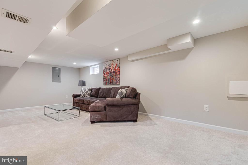 Family/Rec Room- Lower Level - 10219 RODGERS RD, FAIRFAX