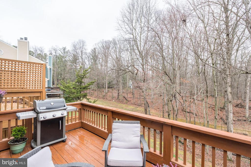 Deck w/ Absolutely Stunning & Serene Wooded Views! - 1614 OAK SPRING WAY, RESTON
