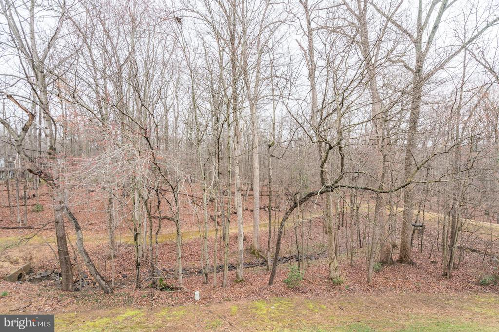 View - Just Wait Until These Trees are in Bloom! - 1614 OAK SPRING WAY, RESTON