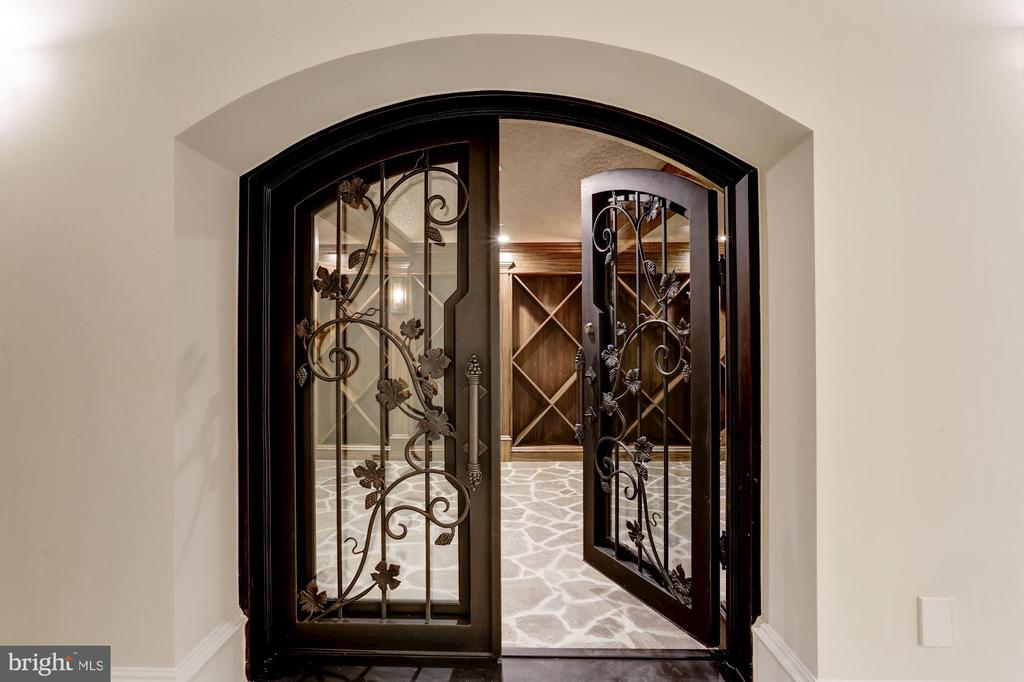 Entry to Private Wine Cellar - 3301 FESSENDEN ST NW, WASHINGTON