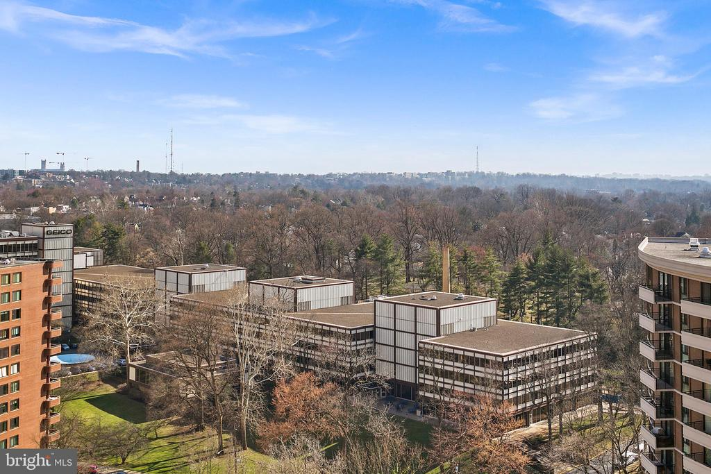 Imagine this View in Spring! - 4601 N PARK AVE #1706, CHEVY CHASE
