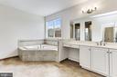 Master Bedroom Vanity and Soaking Tub - 11022 BLEVINS DR, CLARKSVILLE