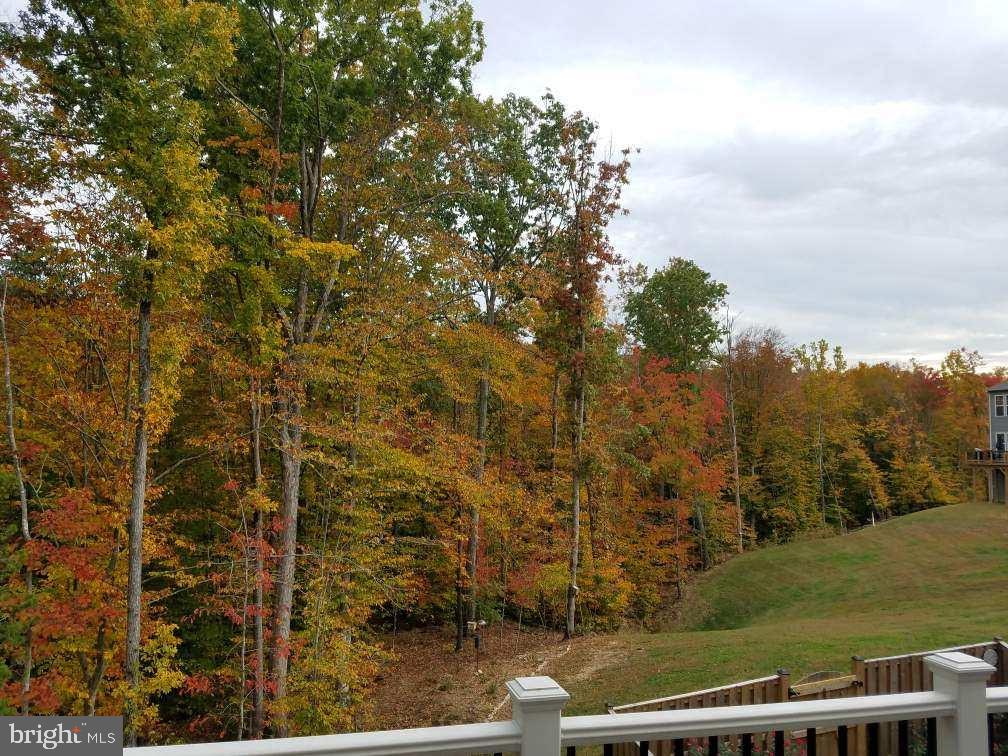 View from deck in the fall - 48 SURVEYORS WAY, STAFFORD
