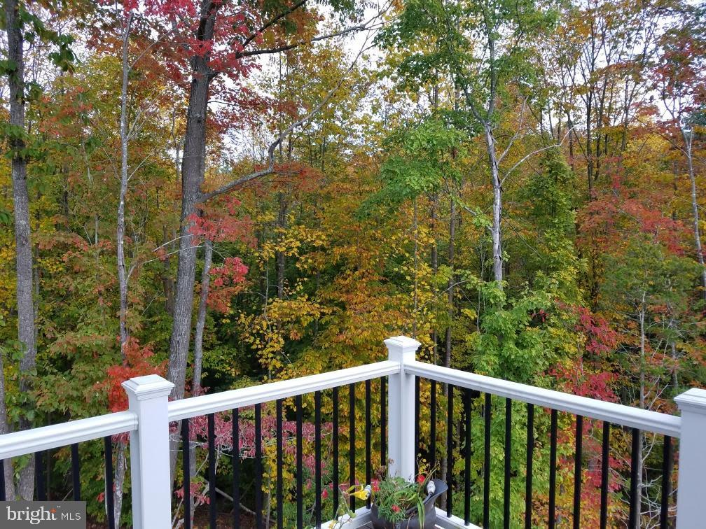 View in the fall - 48 SURVEYORS WAY, STAFFORD