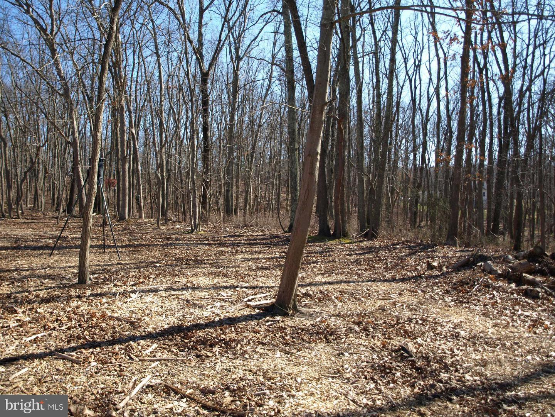 Terreno para Venda às Millstone Township, Nova Jersey 08510 Estados Unidos