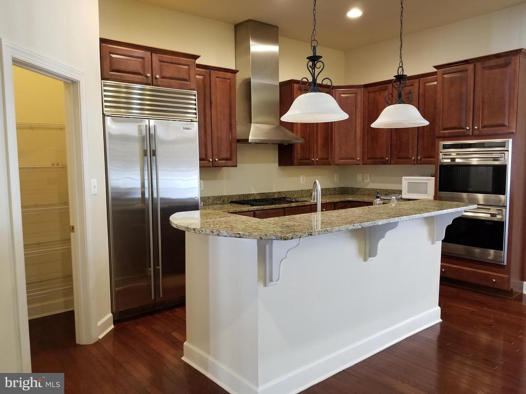 Kitchen - Mail Level - 18213 CYPRESS POINT TER, LEESBURG