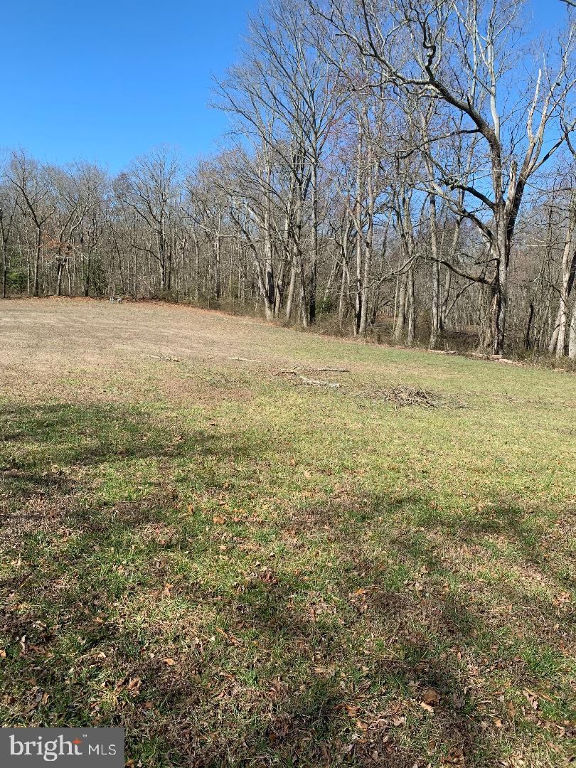Land for Sale at Ridgely, Maryland 21660 United States