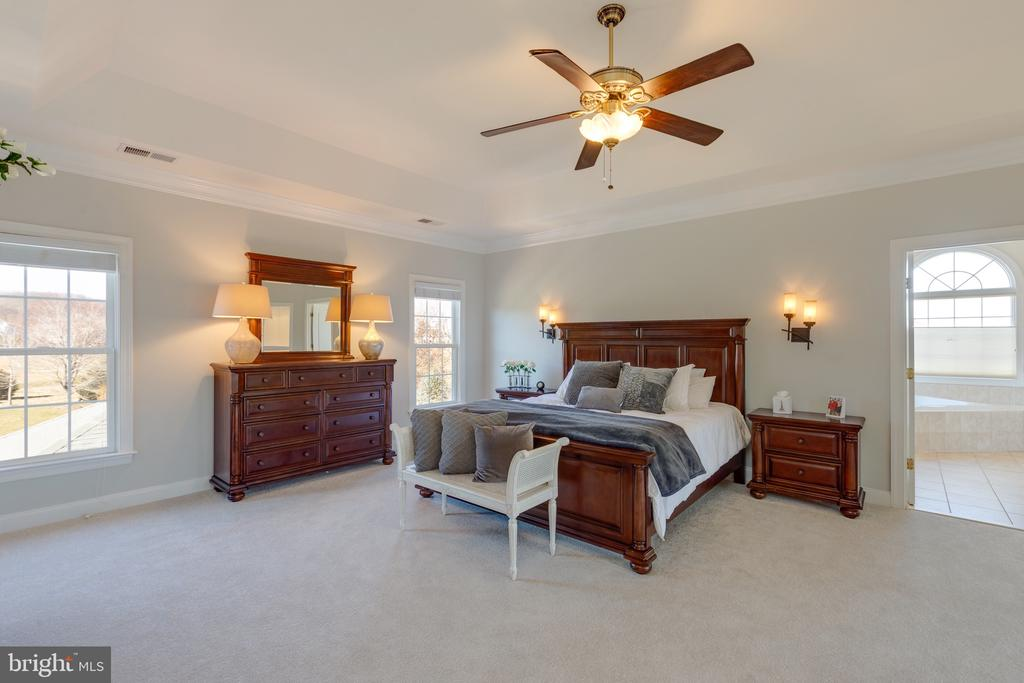 Master BDRM Incredible Views! - 16357 LIMESTONE CT, LEESBURG