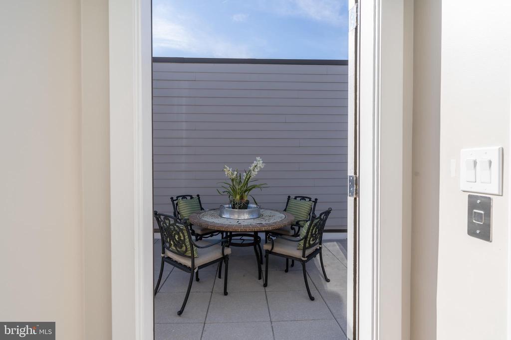 Doorway to Roof Terrace - 505 ORONOCO ST, ALEXANDRIA