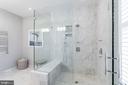Custom over-sized shower - 505 ORONOCO ST, ALEXANDRIA