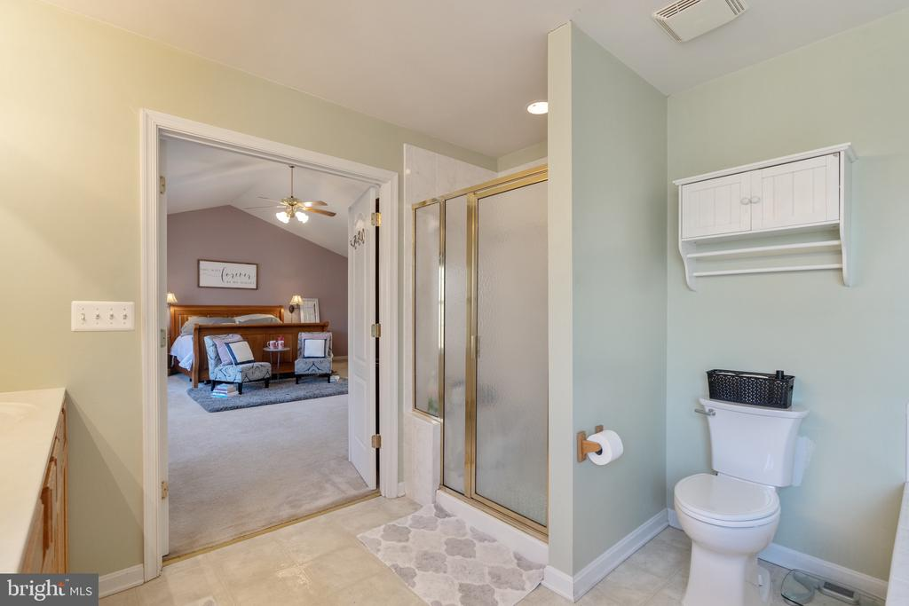 Master bedroom with separate shower - 260 SPOTTED TAVERN RD, FREDERICKSBURG