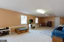 Lower level rec room with full windows - 260 SPOTTED TAVERN RD, FREDERICKSBURG