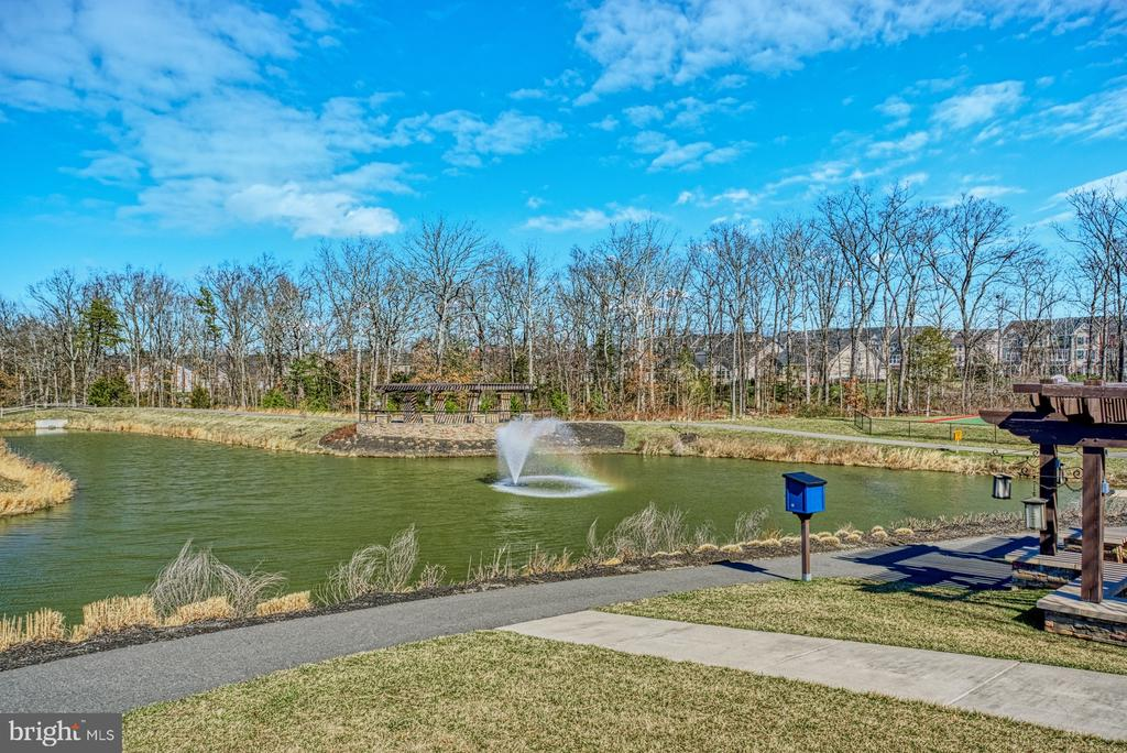 Gorgeous Community Landscaping - 25056 MCCULLEY TER, ALDIE
