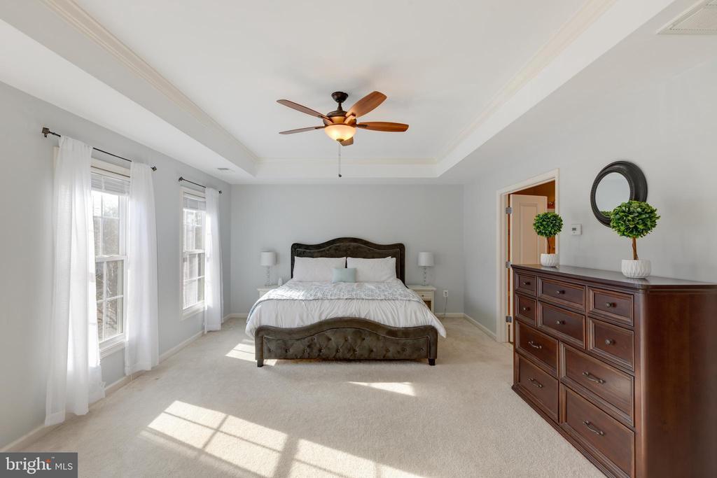 Master Bedroom - 41528 WARE CT, ALDIE