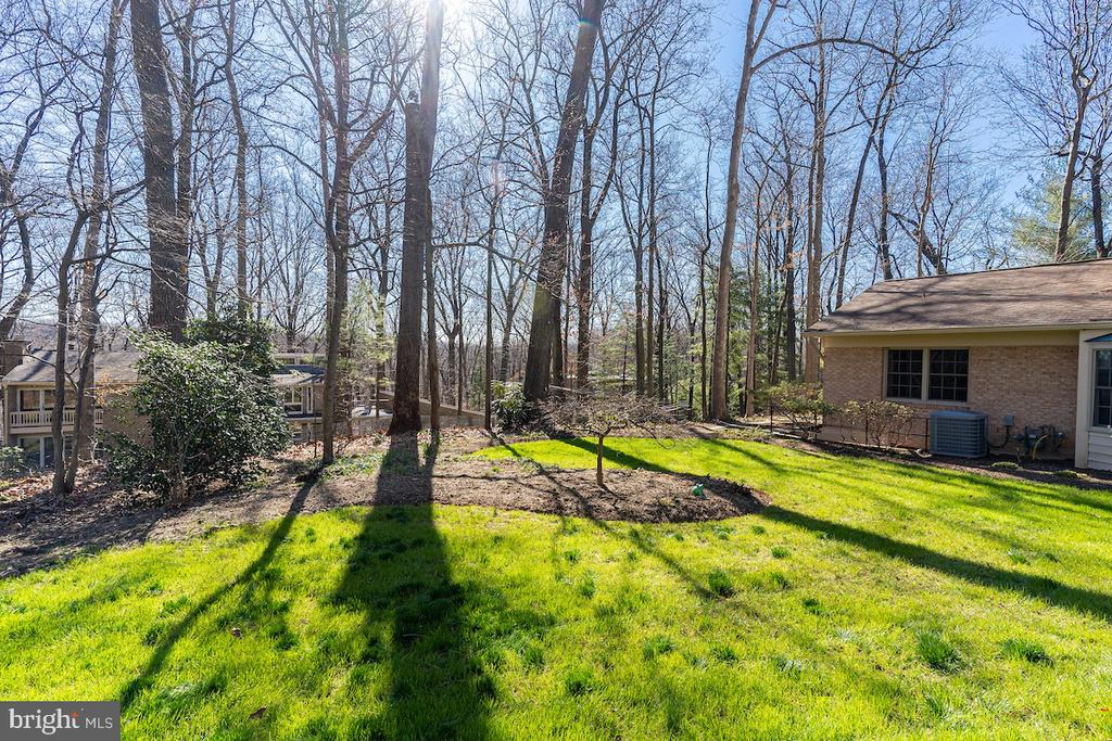 A great deal of wooded land abuts the property. - 11905 VIEWCREST TER, SILVER SPRING