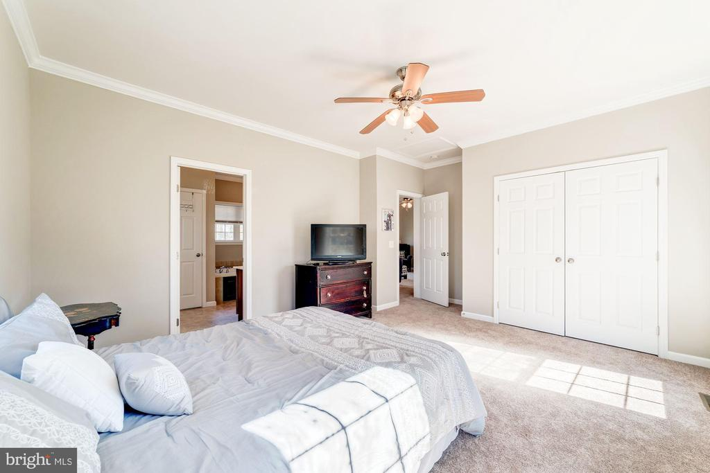 Main level master - 7102 BYRNELEY LN, ANNANDALE