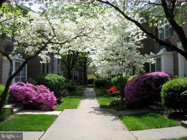 Professional landscaping throughout - 2550-B S ARLINGTON MILL DR #B, ARLINGTON
