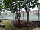 Two tennis courts with lights - 2550-B S ARLINGTON MILL DR #B, ARLINGTON