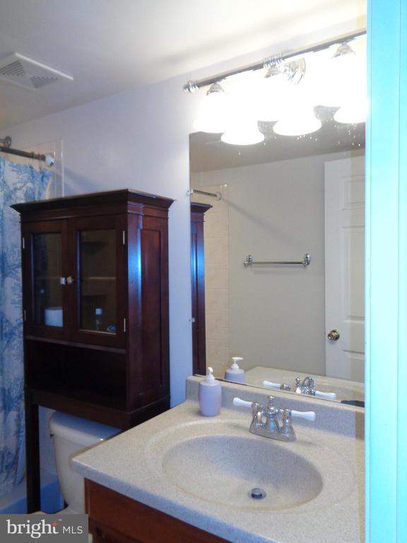 3d Full Bath Vanity with good Lighting - 12509 HAWKS NEST LN, GERMANTOWN