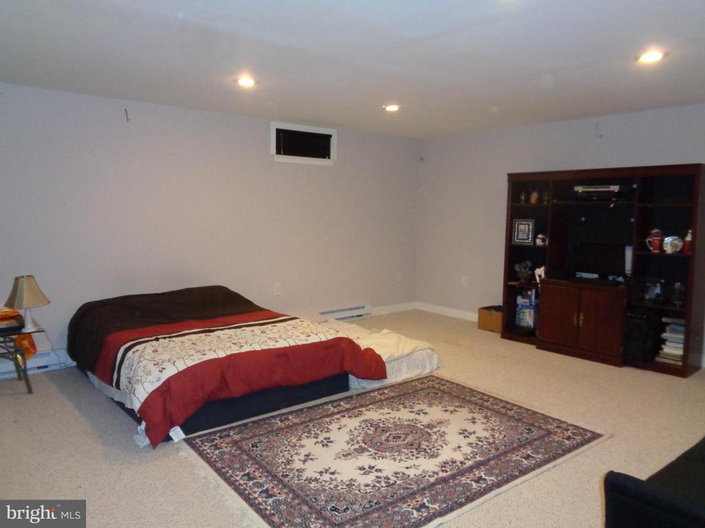 Another View of Spacious Rec Rm - 12509 HAWKS NEST LN, GERMANTOWN
