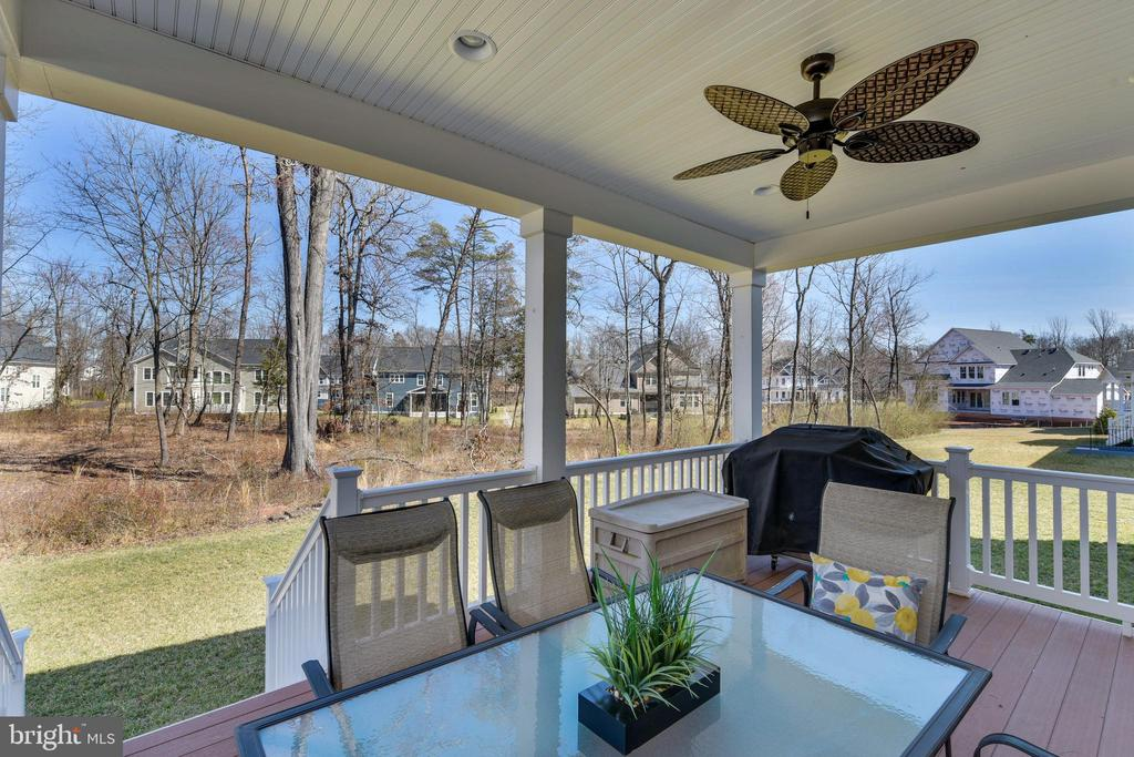 Rear covered porch that backs to treed common area - 41178 CHATHAM GREEN CIR, ALDIE