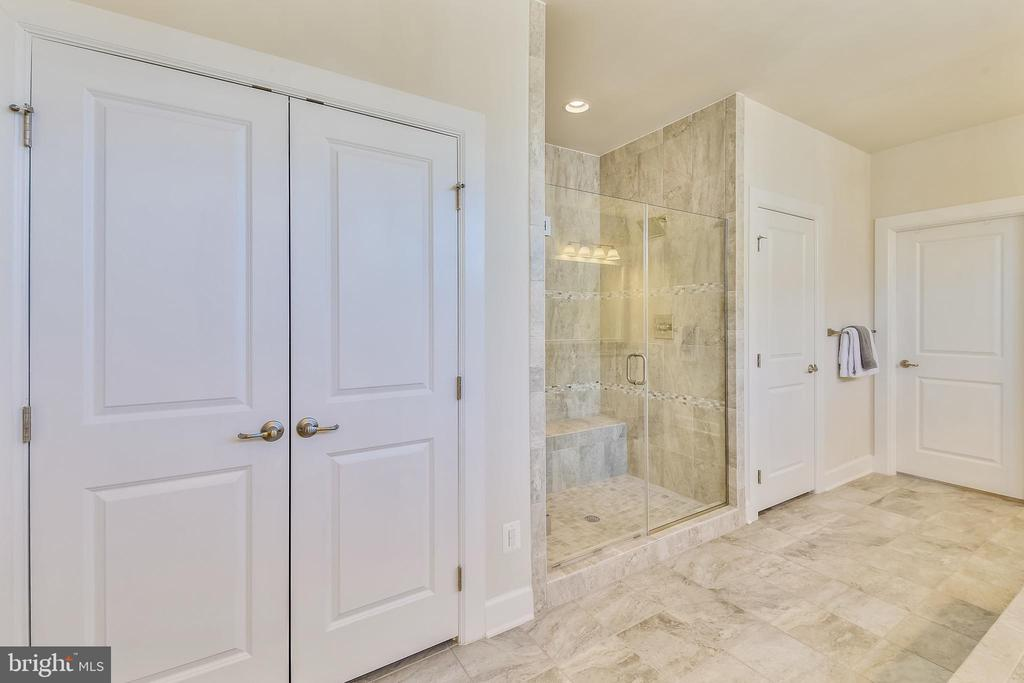Master bath w/ frameless shower - 41178 CHATHAM GREEN CIR, ALDIE