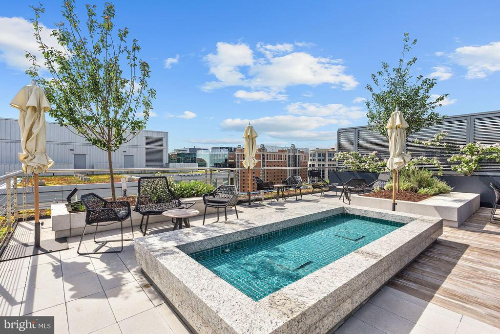 Stunning Roof Top Deck - 920 I ST NW #811, WASHINGTON