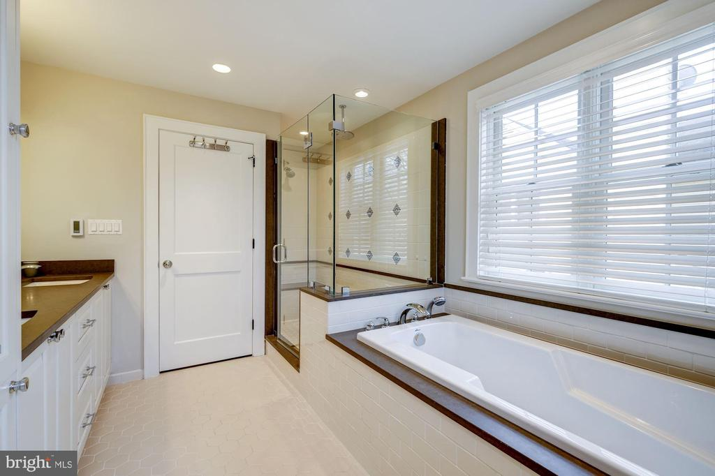 Master bath view 2 - 4405 RIDGE ST, CHEVY CHASE