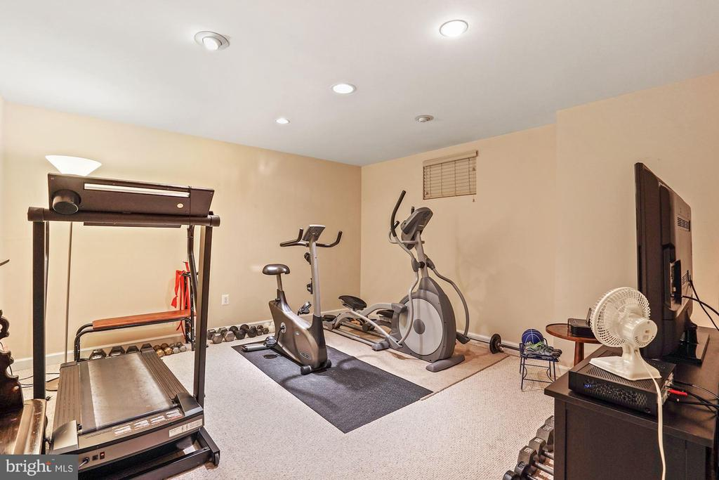 Bonus room/exercise room - 10104 FARR OAK PL, FAIRFAX