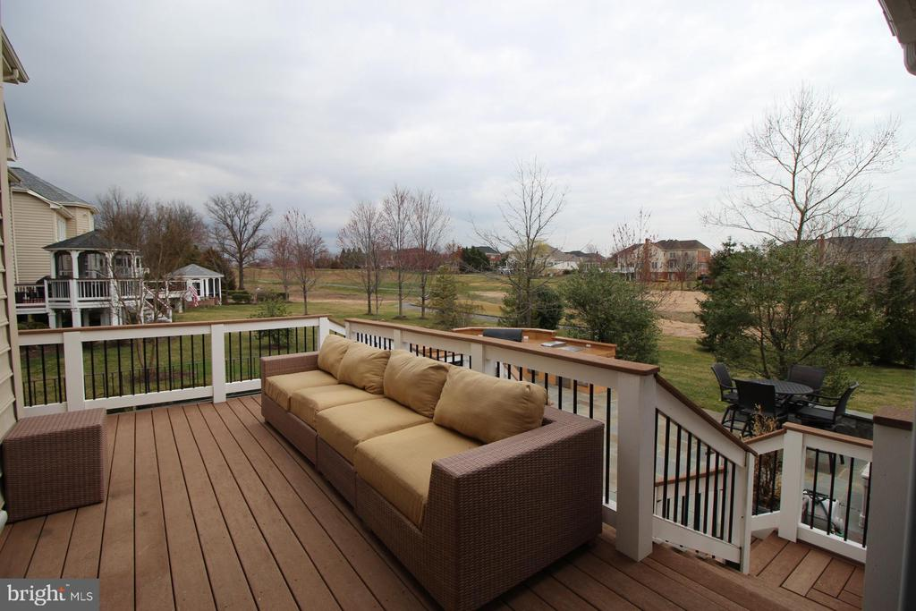 Outdoor Trex Deck - 19876 BETHPAGE CT, ASHBURN