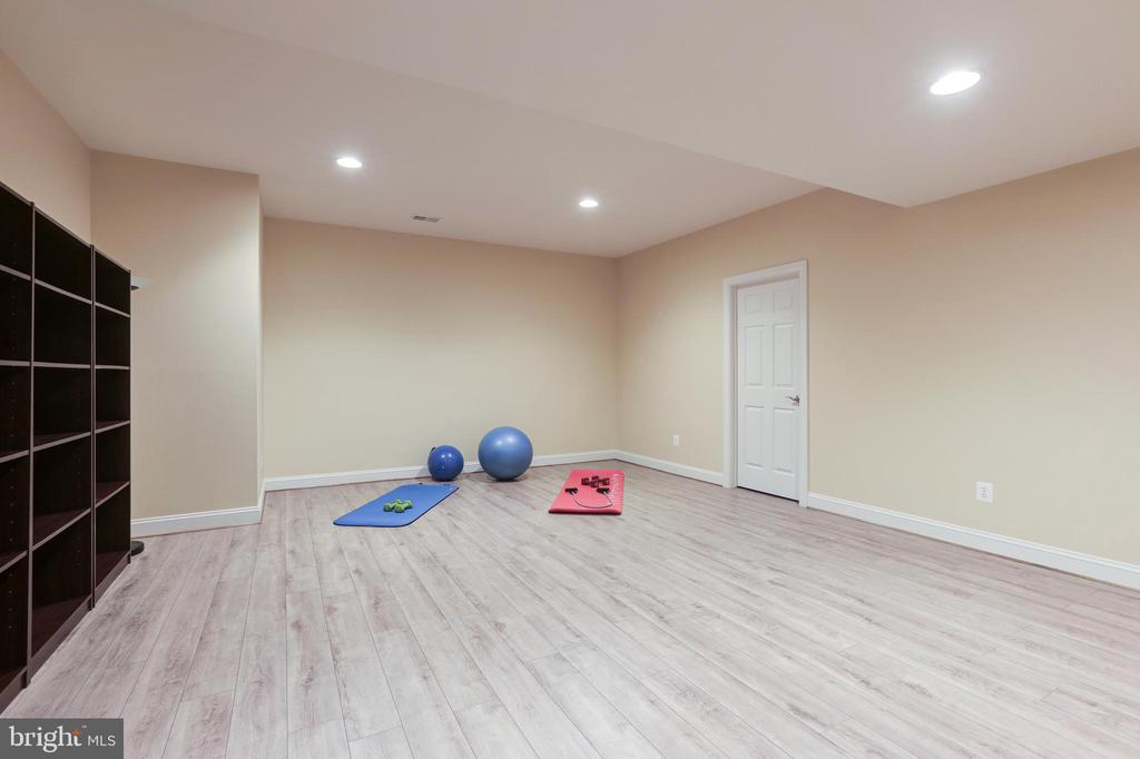 Lower Level Exercise Room - 27651 EQUINE CT, CHANTILLY