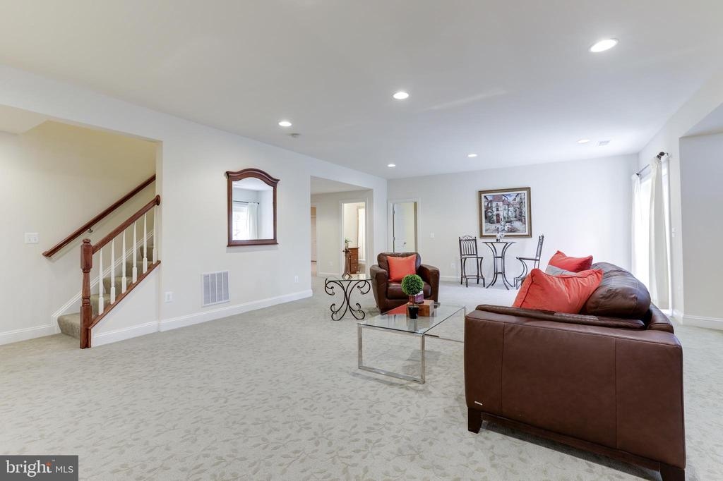 Lower Level - 27651 EQUINE CT, CHANTILLY