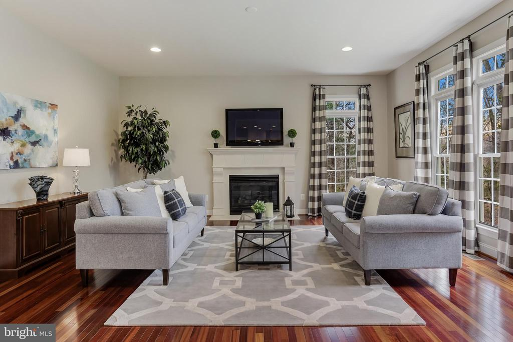 Beautiful Living Room - 27651 EQUINE CT, CHANTILLY