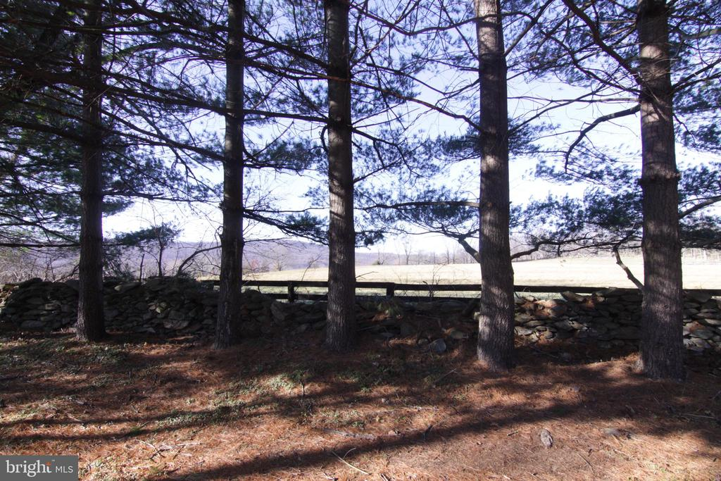 tree lined and stone fenced on three sides - 35820 CHARLES TOWN PIKE, HILLSBORO