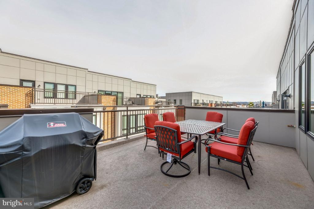 Fire up the grill on your rooftop ! - 420 NOTTOWAY WALK, ALEXANDRIA