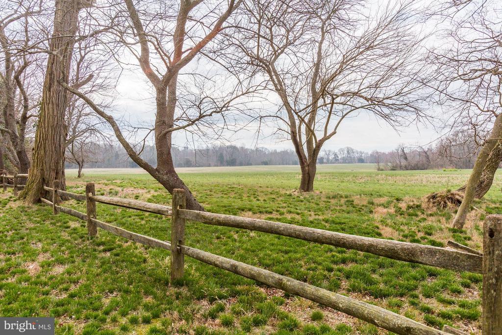 pasture - 1634 HOLLY BEACH FARM RD, ANNAPOLIS