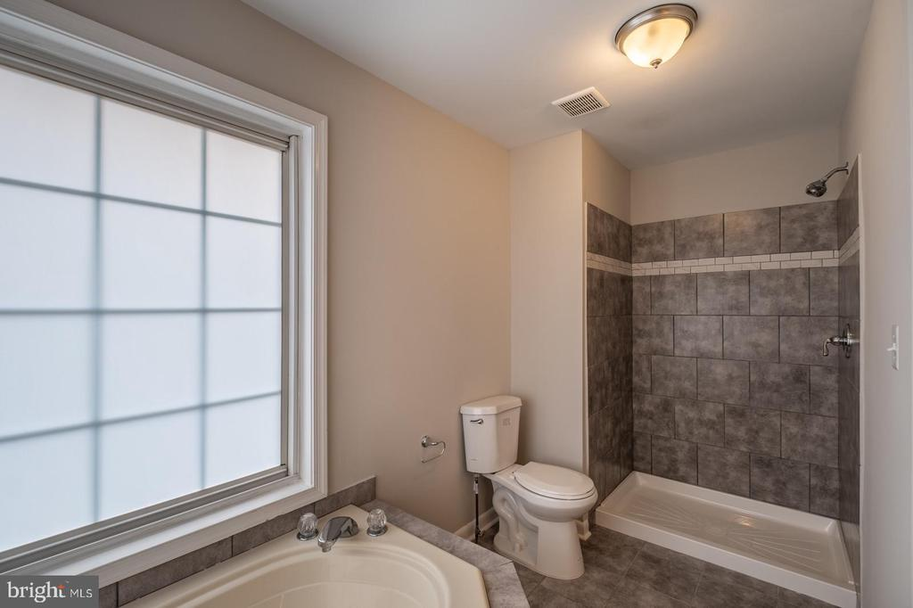 Master Bathroom with Jacuzzi Tub & Stand Up Shower - 105 MUSKET LN, LOCUST GROVE