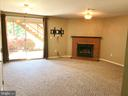 Lower Level With Fireplace - 43994 CHOPTANK TER, ASHBURN