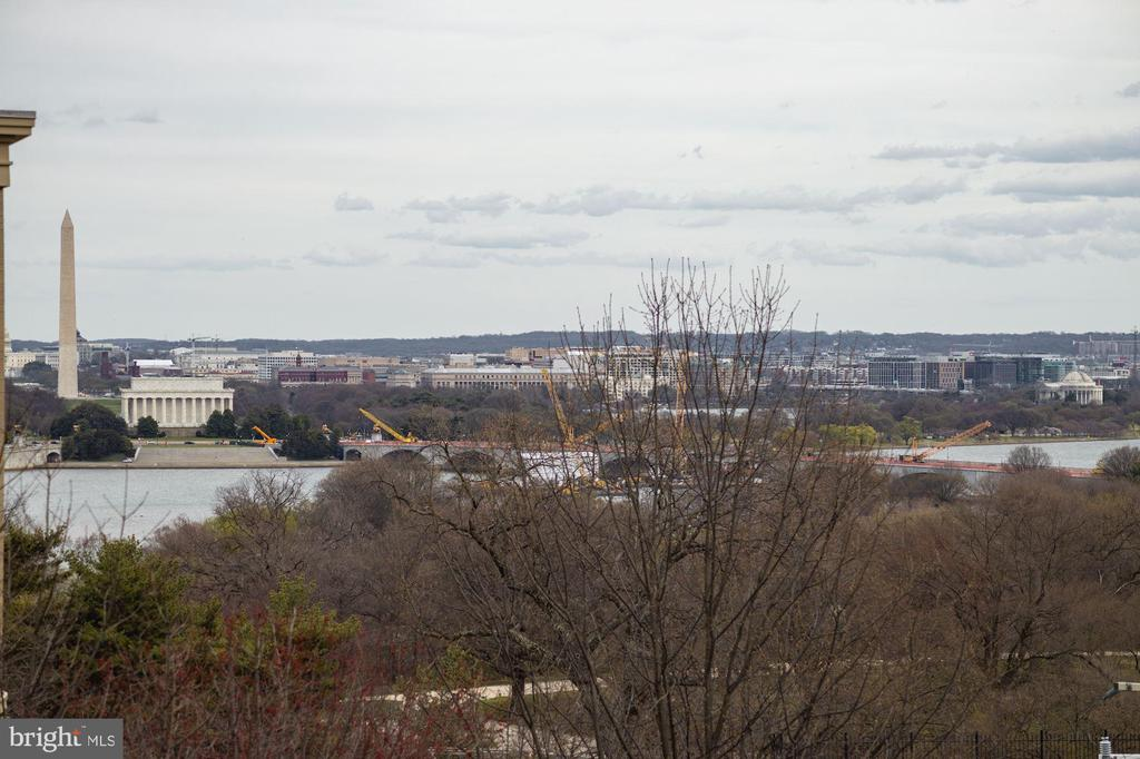 Unparalleled views - 1401 N OAK ST #302, ARLINGTON