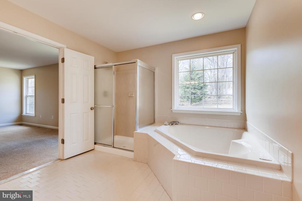 Sunlit Soaking Tub w/ Separate Shower - 1104 PARK RIDGE DR, MOUNT AIRY