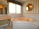Master Bath - 6431 LAKE MEADOW DR, BURKE