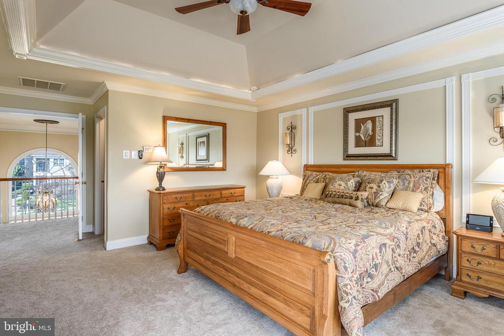 Master Suite - 19876 BETHPAGE CT, ASHBURN