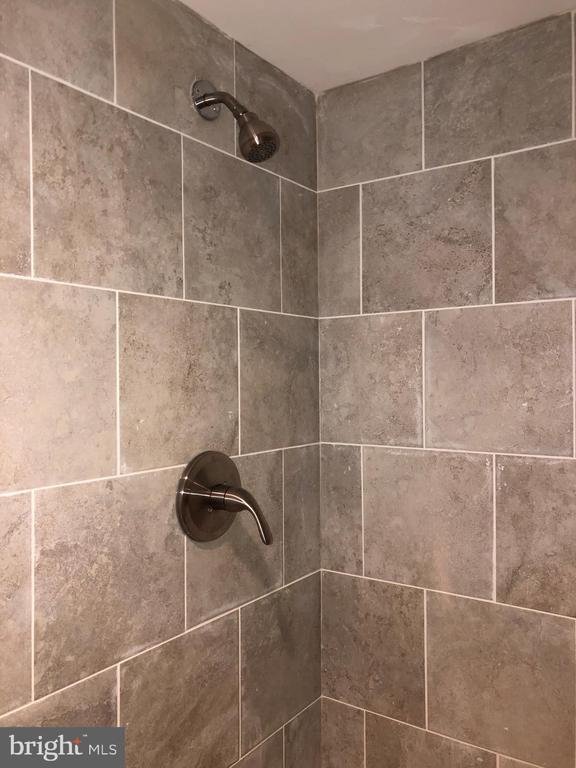 BASEMENT - FULL BATH - SHOWER SURROUOND - 2809 63RD AVE, CHEVERLY