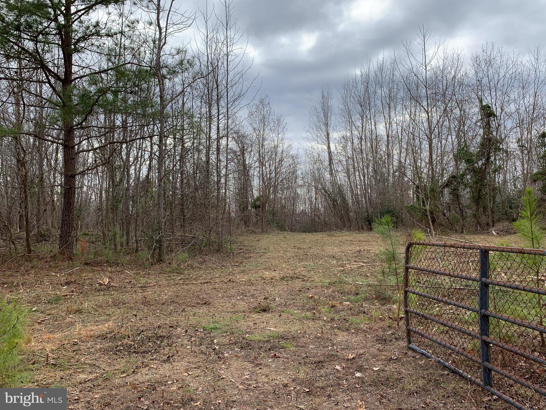 土地 為 出售 在 Hustle, 弗吉尼亞州 22476 美國