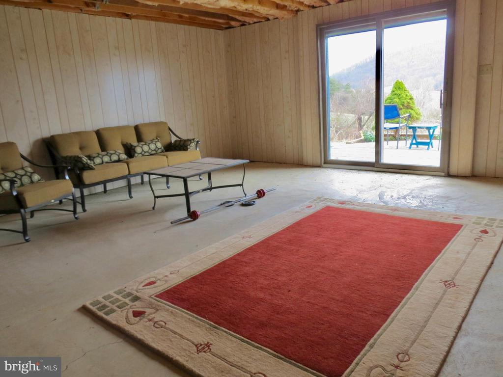 Lowe level rec room or possible suite w/ RI bath - 335 FODDERSTACK RD, WASHINGTON