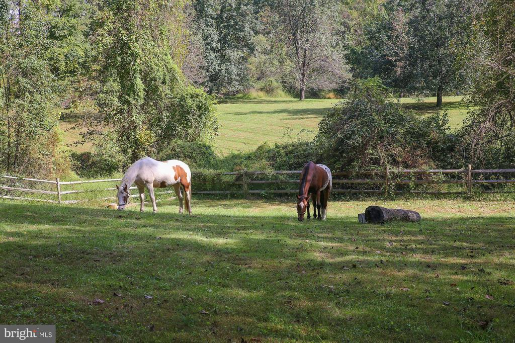 Pastures / 2 Additional Finished Lots INCLUDED - 12466 KONDRUP DR, FULTON