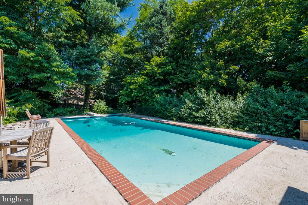 View of the Pool - 308 KING ST, LEESBURG
