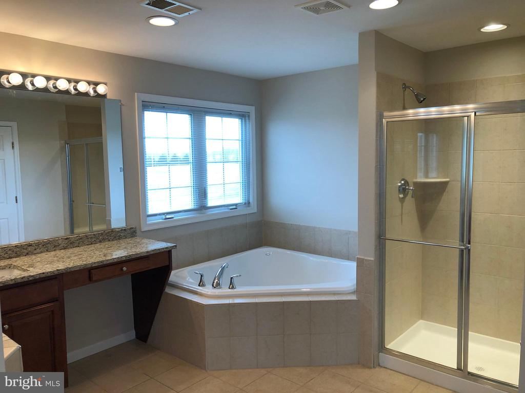 Master Bathroom - 14042 BLUE VIEW CT, LEESBURG