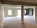 Basement - 14042 BLUE VIEW CT, LEESBURG