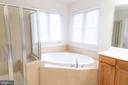 Master Bathroom - 1689 WINTERWOOD CT, HERNDON